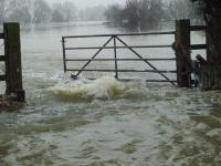 200_Flooding at Chertsey Bridge Rd